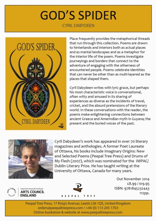 God's Spider Flyer-comp