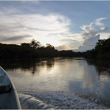 Dawn on the Rupununi River - Southern Guyana