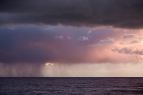 Purple Rain - Photography by Adam Rose