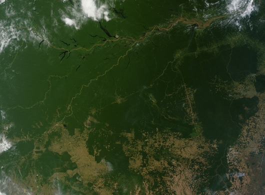 Satellite Photo of the Amazon Rainforest - 31 July 2011