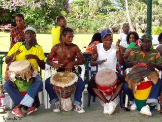 Drums of the Botanical Gardens - Dmitri Allicock