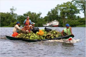 sweetness of Guyana