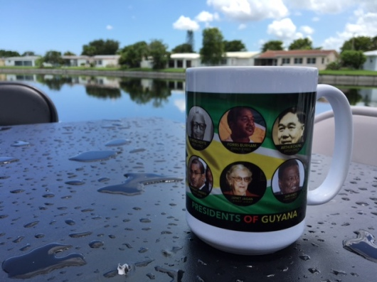 I bought this cup on Main Street as a gift for a friend. Here it is now in Fort Lauderdale, Florida.