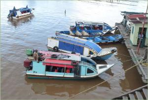 Water taxis at Parika speed you to Bartica in 1.5 hours