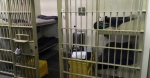 hedgesprisonstrike_590